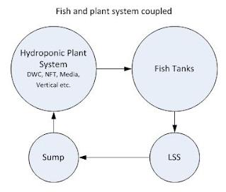 Aquaponic System Decoupling - Colorado Aquaponics