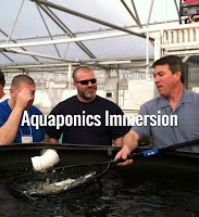 https://www.theaquaponicsource.com/aquaponics-immersion/