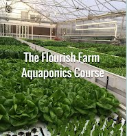https://www.theaquaponicsource.com/aquaponic-farming/